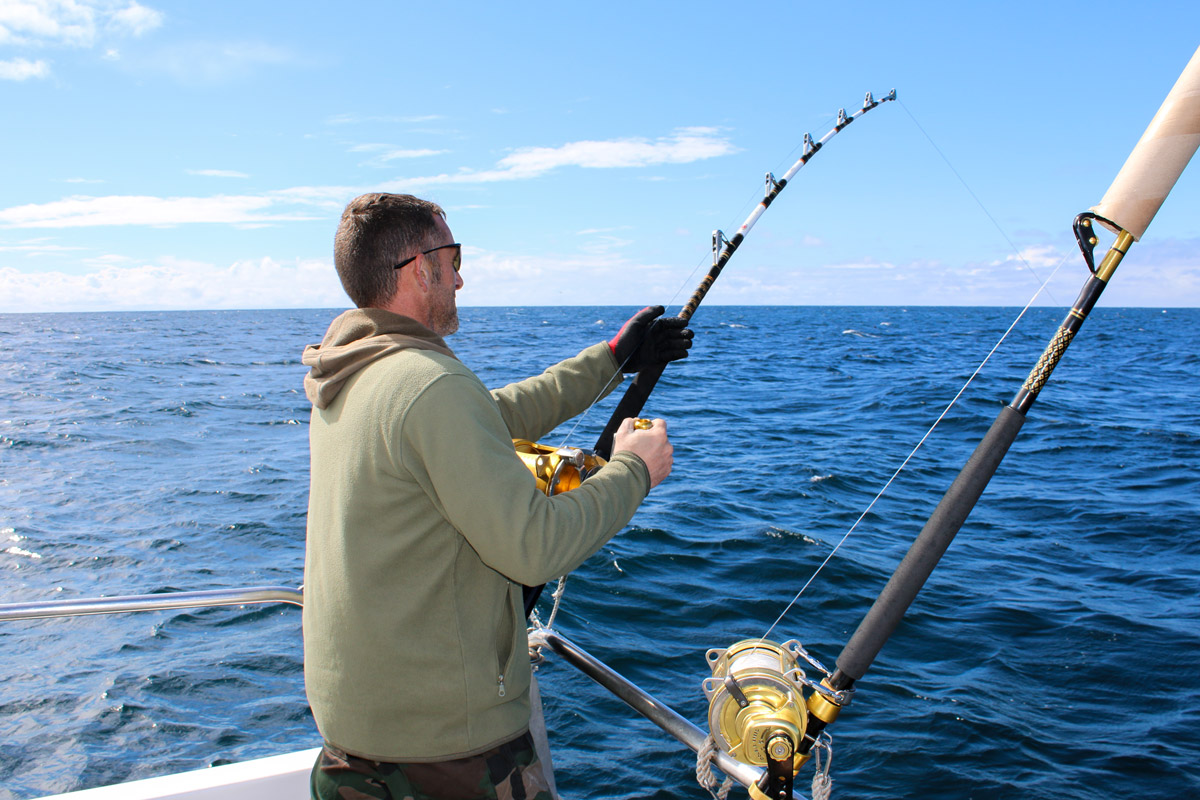 bluefin tuna recreational angling catch and release