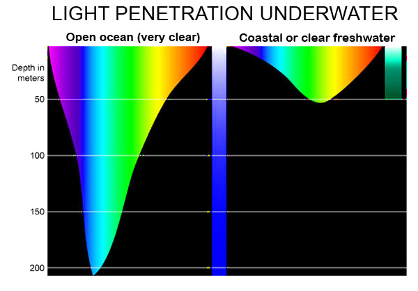Light penetration underwater