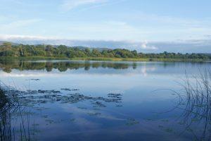 Clare Lakelands festival
