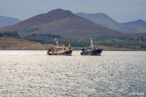 pair trawling