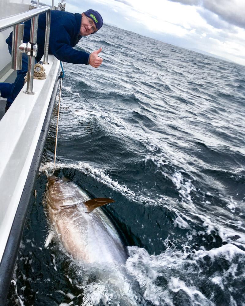 adrian molloy tuna