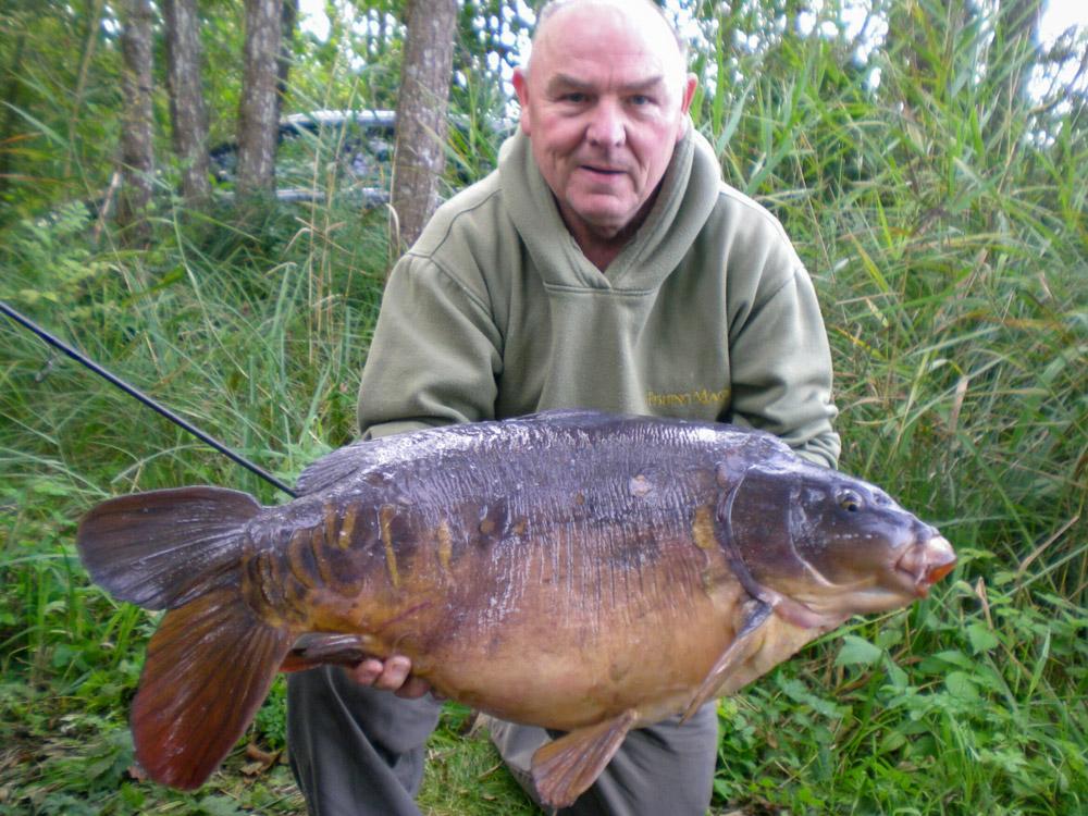 Loughgall mirror carp