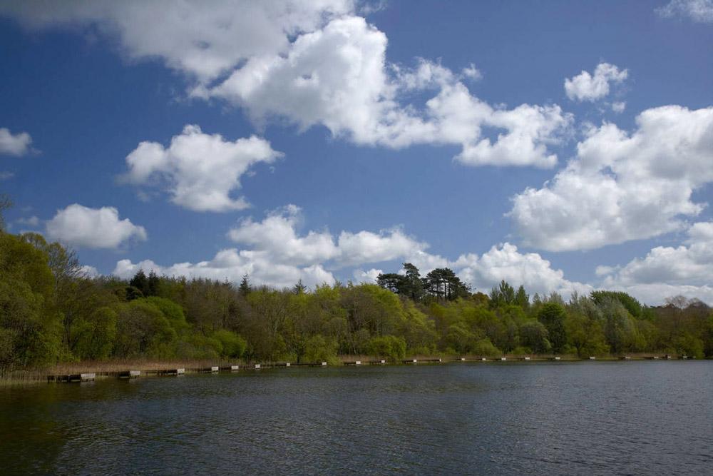 Loughgall Lake, Armagh